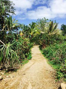 Hawaii on the Road to Hana